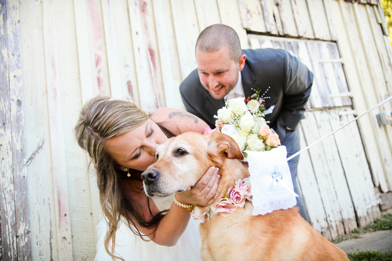 Wedding Photography and Couples Photography, bride giving their dog a kiss